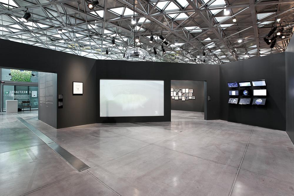 aldo_paredes_biennale_design_platine_2_bd-5