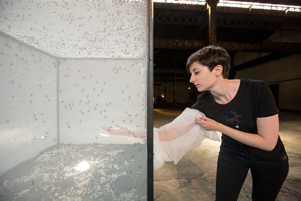 aldo_paredes_palais_de_tokyo_biennale_lyon_bd-43