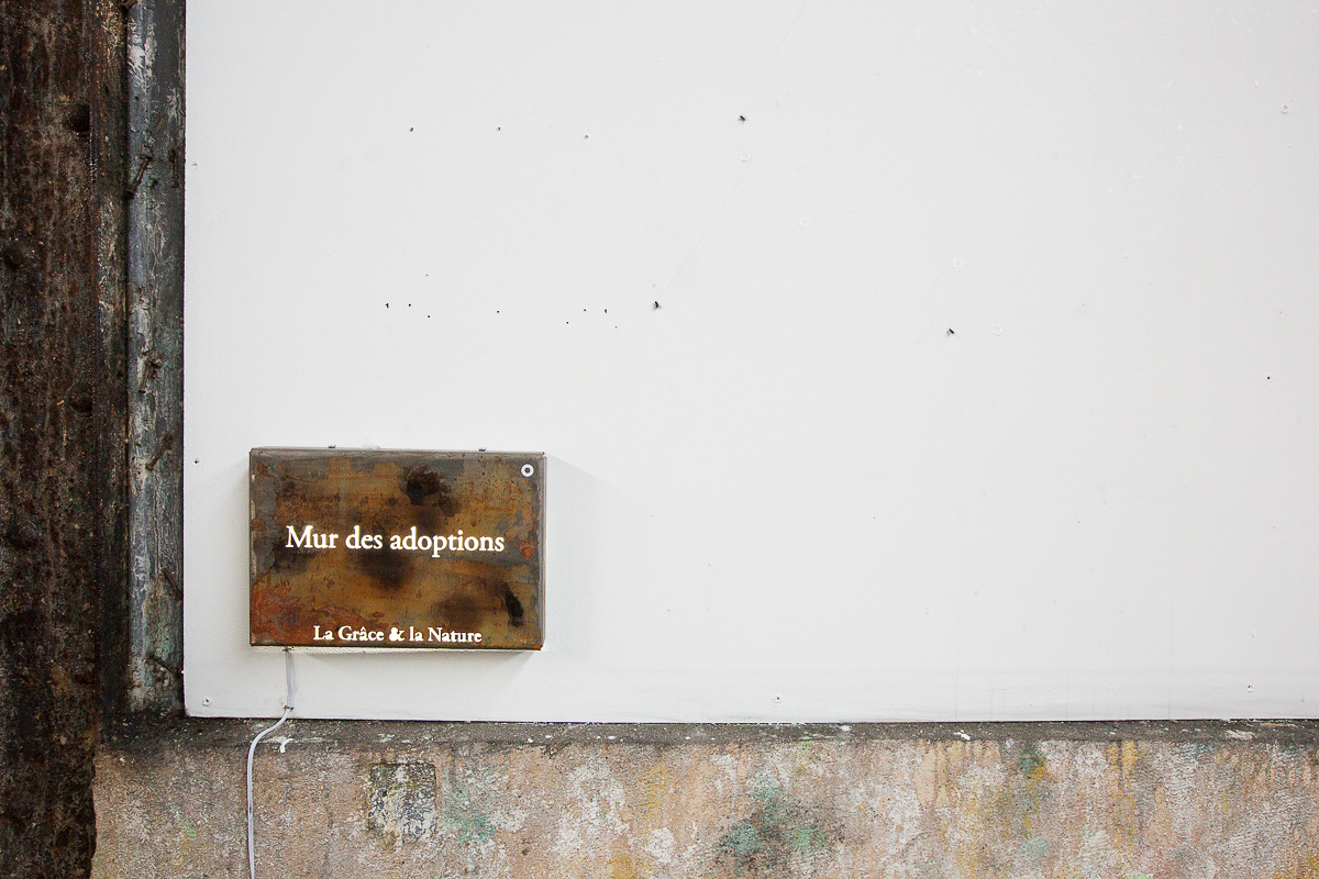 aldo_paredes_palais_de_tokyo_biennale_lyon_bd-48