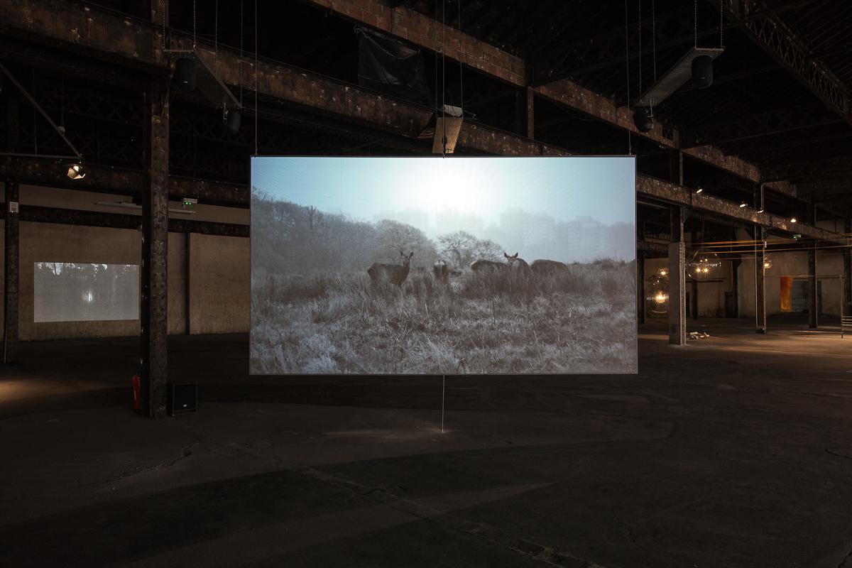 aldo_paredes_palais_de_tokyo_biennale_lyon_bd-8