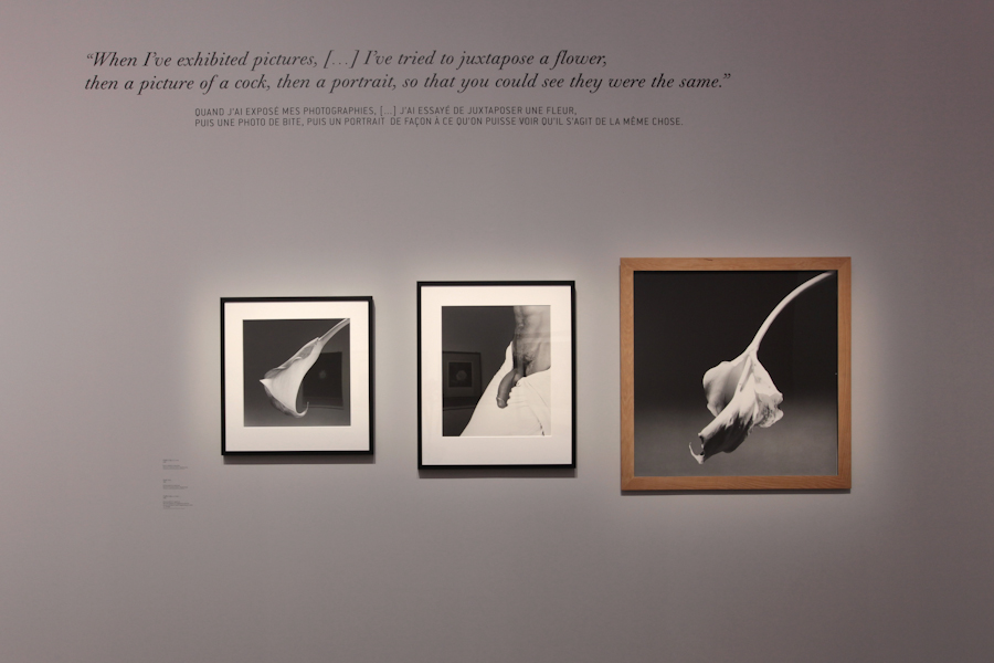 aldo_paredes_robert_mapplethorpe_rmn_gp_bd-22