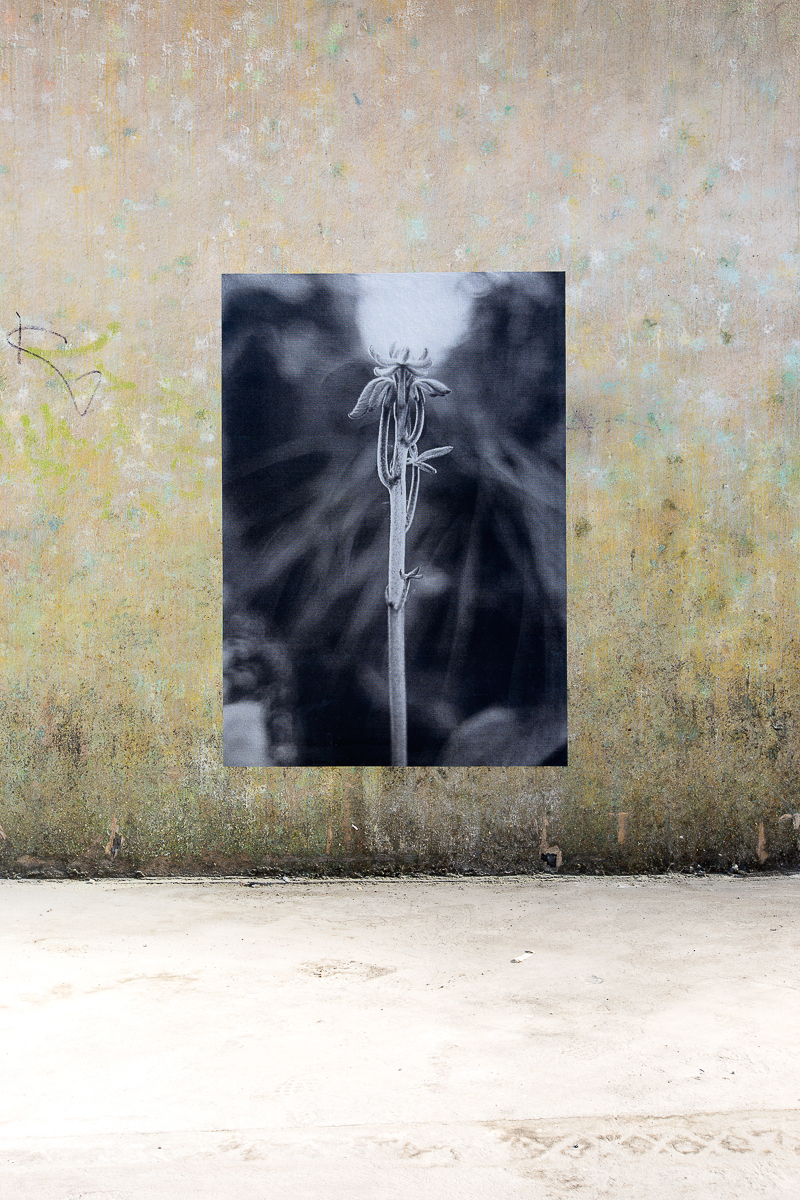 aldo_paredes_palais_de_tokyo_biennale_lyon_bd-30
